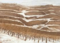 Winter in den Weinbergen Peter Loose