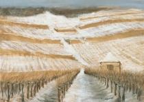 Wintersonne  in den Weinbergen Peter Loose