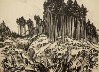 Tharandter Wald Erich Fraaß